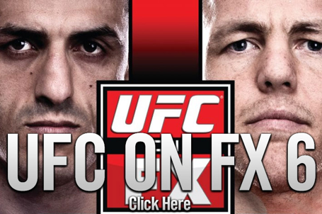 UFC on FX 6 Results
