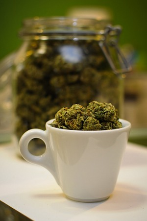 Weed_cup