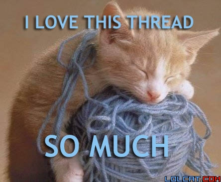 Threadlovercat_medium