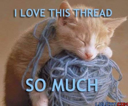 Threadlovercat_medium