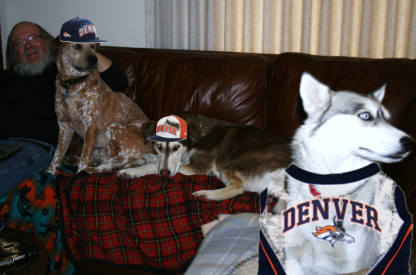 Broncodogs_medium