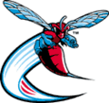 120px-delawarestatehornets_medium