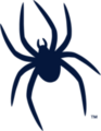 93px-richmondspiders_medium