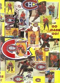 Habs_dvd_boston_medium