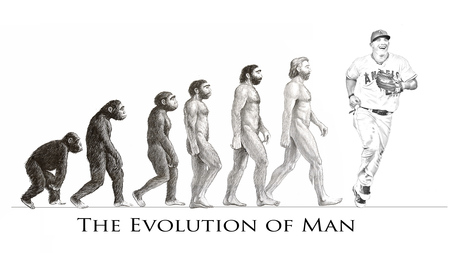 Evolution_medium