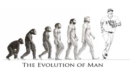 Evolution_medium