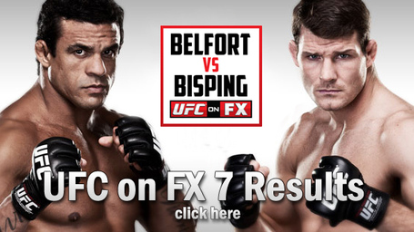 UFC on FX 7 Results