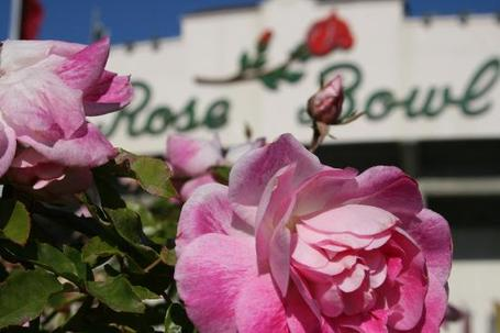 The-rose-bowl-stadium_medium