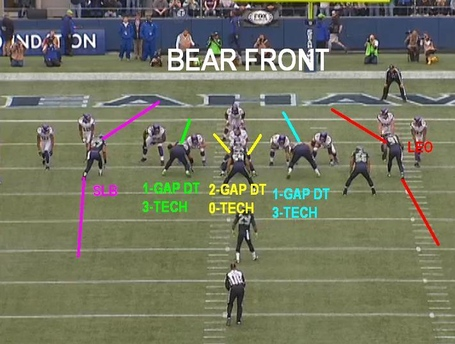 Bear_front_medium