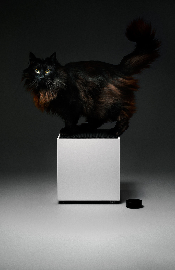 Od-11-cat_big