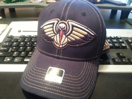 Pelicans_medium