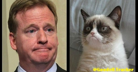 Goodella_nd_grumpy_cat_medium