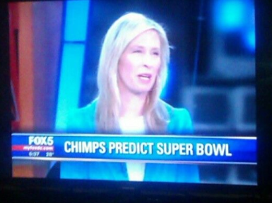 Superbowlchimps_medium