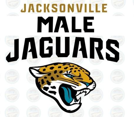 Male_jaguars_medium