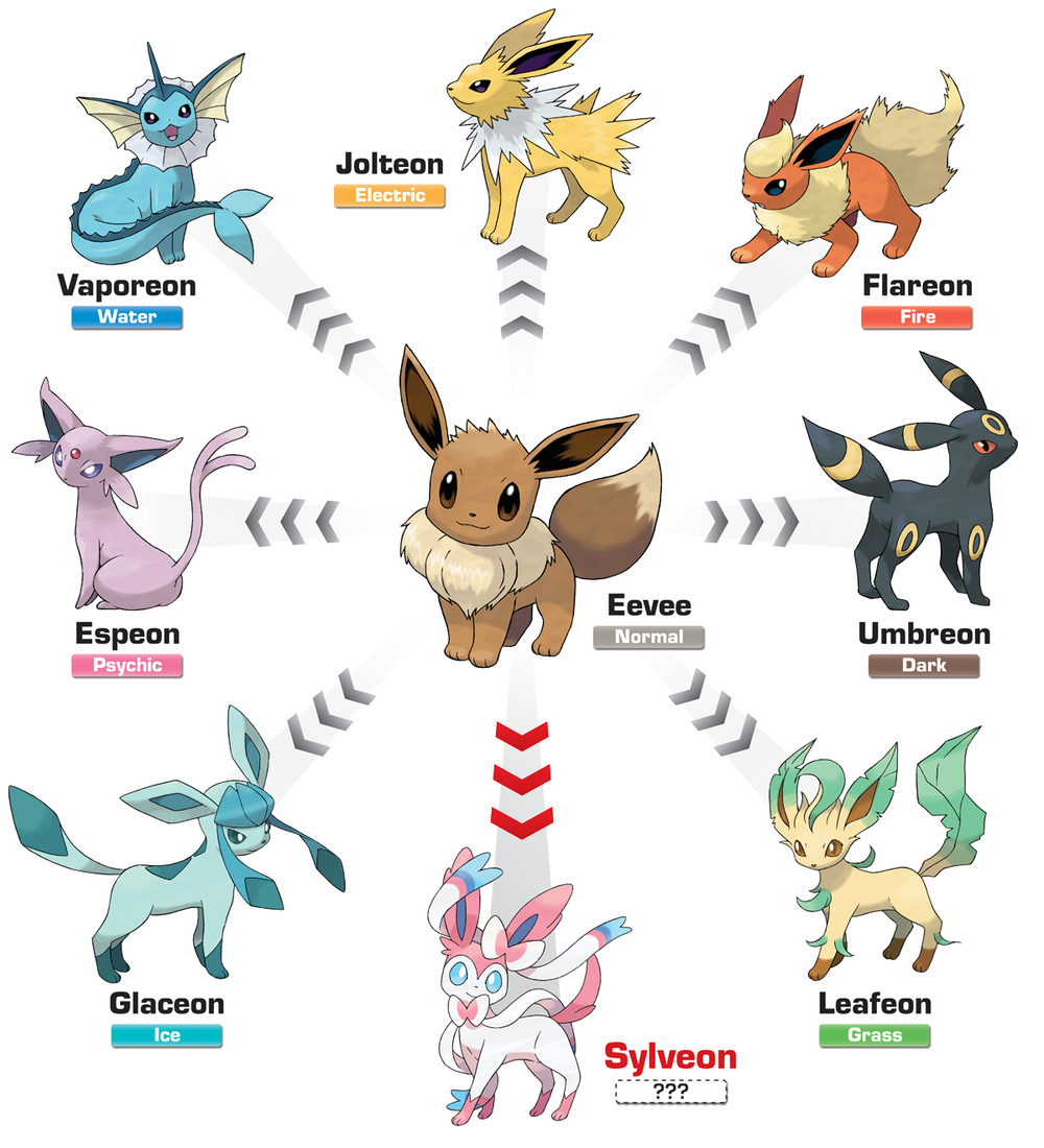 photo of eevee pokemon and its evolutionary forms