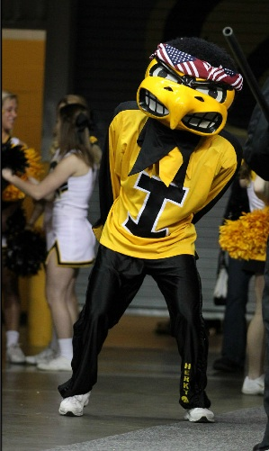 Real_herky_american_medium