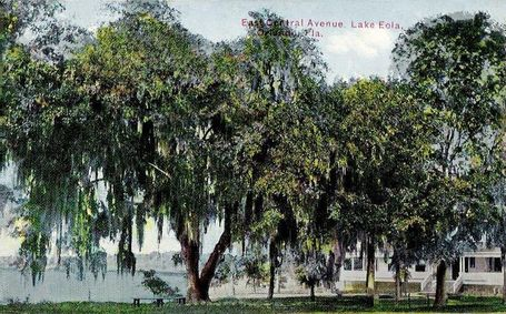 800px-lake_eola_from_east_central_blvd