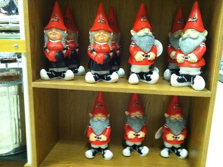 Ddaygnomes_medium