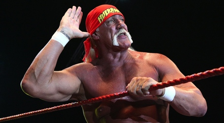Hulk-hogan-1000_medium