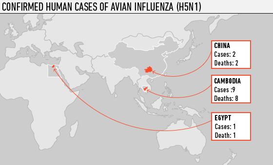 Avian-flu-cases-march-2013-who