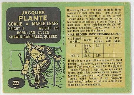 Plante702_medium