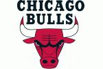 Bullslogo_medium