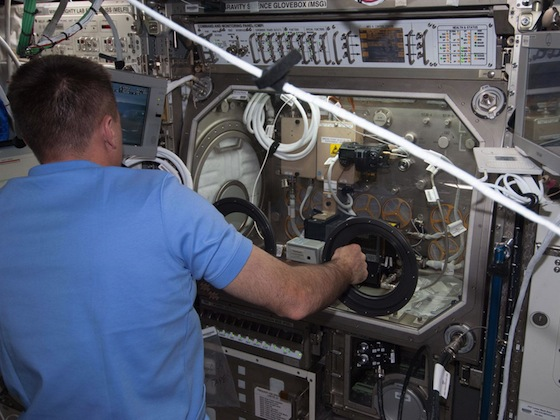 Nasa-microgravity-science-glovebox
