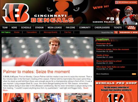 Bengals_site_2009_medium