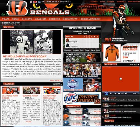 Bengals_site_2007_medium
