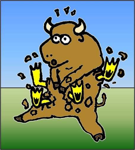Buffalostomachs_medium