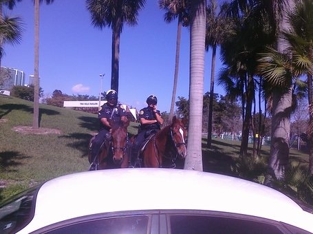 Policehorse_medium