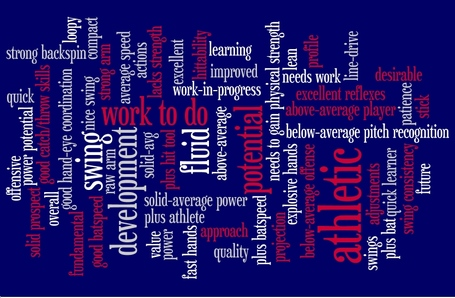 Red_sox_position_prospect_blake_swihart_wordle_medium