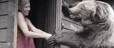 Bear_attack_medium