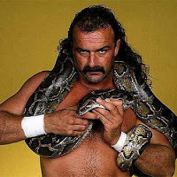 Jake-the-snake-roberts_medium