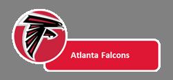 Falcons_medium