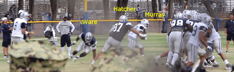 Ware_hatcher_murray_medium