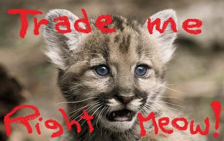 Panther_medium