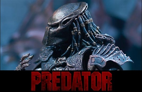 Predator_photo_medium