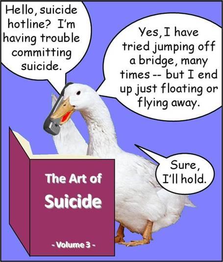 Ducksuicide3_medium