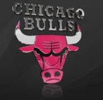 Bulls_medium