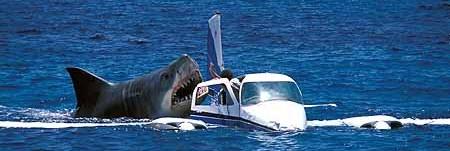 Jaws_20shark_20attacks_20plane_medium
