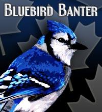 Bluebird_medium