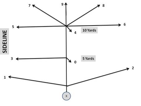 Coryall_route_tree_medium