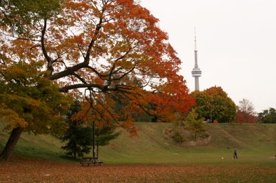 Toronto_autumn_medium