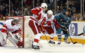 56371_red_wings_sharks_hockey_medium