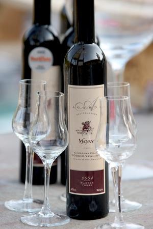 Agardi_palinka_vylyan_cabernet_franc_torkolypalinka_viragneked_bor_kuldes_italkuldes_borvallogatas_ajandekkuldes_flowerdelivery_wine_delivery_251_medium
