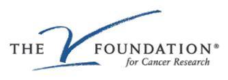 V_foundation_medium