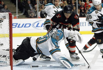 Hossa-sharks-thumb-450x308-48402_medium