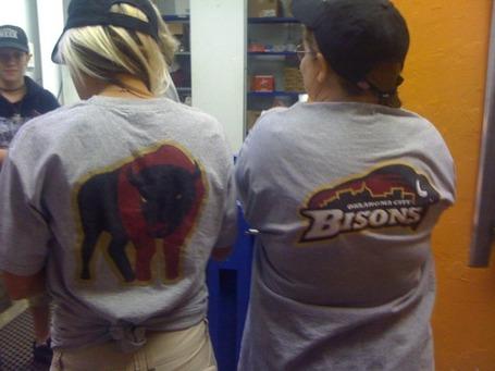 Bison_medium