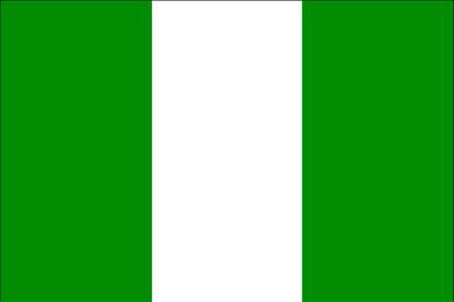 Nigeria_flag_medium